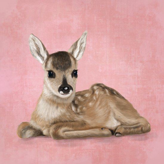 Portrait of a small fawn on a rustic pink background Canvas Print