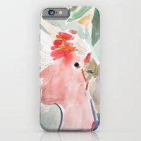 Mitchell The Cockatoo iPhone 6 Slim Case