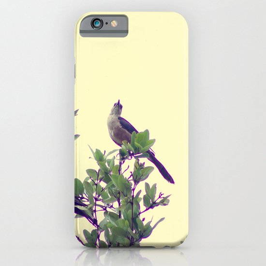 Maria Mulata Bird I iPhone & iPod Case