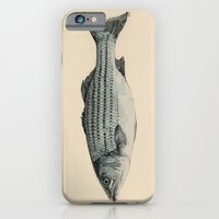 iPhone & iPod Case featuring A Fish by Megs stuff...