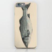 A Fish iPhone 6 Slim Case