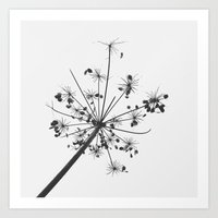 Simply lace Art Print