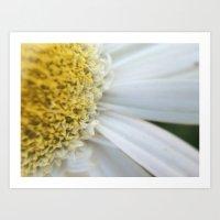 Yellow + White flower  Art Print