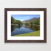 Duckpond Framed Art Print