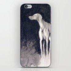Resplendence iPhone & iPod Skin