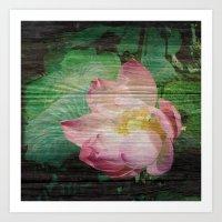 Lotus Woodblock Art Print