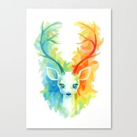 Feather Fawn Canvas Print