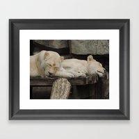Sleeping beauties Framed Art Print