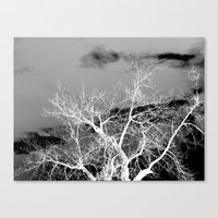 Go Ahead And See Canvas Print