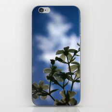 Low Angle of White Flowers With Blue Sky and Cloud in the Background iPhone & iPod Skin