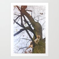 Little Orange Cat On A B… Art Print