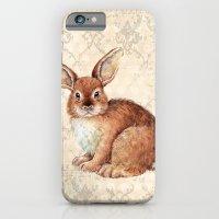 rabbit iPhone & iPod Cases featuring Rabbit by Patrizia Ambrosini