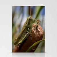 Grasshopper  2 Stationery Cards