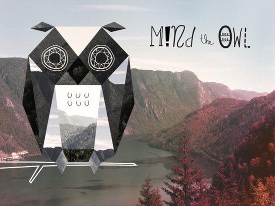 Mind the Owl! Art Print