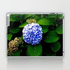 Blue Flower (Edited) Laptop & iPad Skin