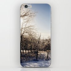 Frozen Countryside iPhone & iPod Skin