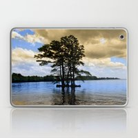 Cypress Trees Laptop & iPad Skin