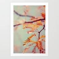 Art Print featuring Autumn #2 by Alicia Bock