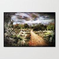 Down The Beaten Path Canvas Print