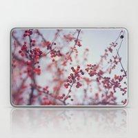 Winter Red Laptop & iPad Skin