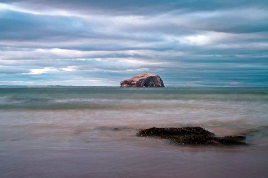 The Bass Rock from Seacliff Art Print