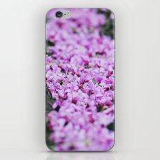 Sweet memories of Spring iPhone & iPod Skin