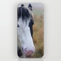 Black And White Horse Po… iPhone & iPod Skin