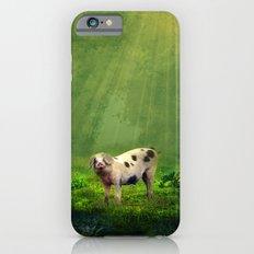 piggy iPhone 6 Slim Case