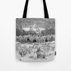 Sheep on the Brecon Beacons.Wales. Tote Bag
