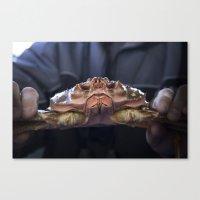 Such A Crab! Canvas Print