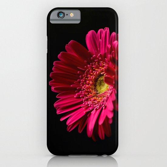 Pink Gerbera Daisy 2 iPhone & iPod Case
