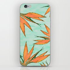 AVE DEL PARAISO iPhone & iPod Skin