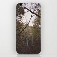 T R E A S  iPhone & iPod Skin