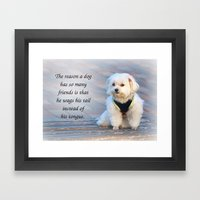 A Cute Bichon Dog Sits Patiently on a Bench Framed Art Print