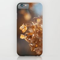 iPhone & iPod Case featuring Gold by Katie Kirkland Photography