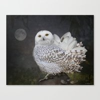 If an owl became a magnolia Canvas Print