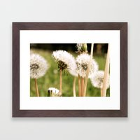 Lion's Den Framed Art Print
