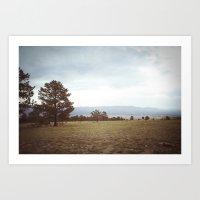 Set Free::buena Vista, C… Art Print