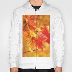 Colorful Leaves Hoody