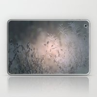 The Light Of The Moon Laptop & iPad Skin