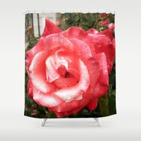 Rainy Day Rose Shower Curtain