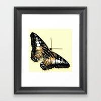 Papillon Jaune Et Noir Framed Art Print