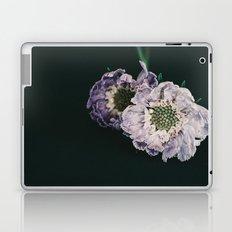 foreground Laptop & iPad Skin