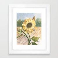 Sunflower Morning Framed Art Print