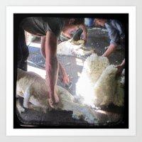 The Shearer - Through Th… Art Print