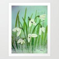 Snow drops  Art Print