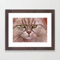 White Cat CC15-01 Framed Art Print