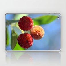 Strawberry tree fruits 8697b Laptop & iPad Skin