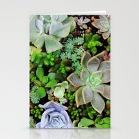 Collection of Succulents Stationery Cards