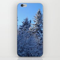 Breathtaking iPhone & iPod Skin